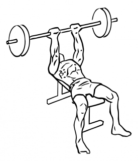 Reverse triceps bench press with barbell small frame 2