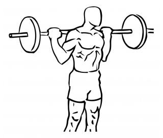 Rocking standing calf raise with barbell small frame 2