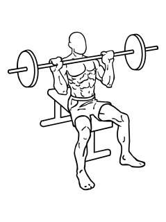 Seated barbell shoulder press small frame 1