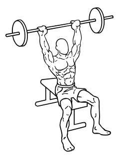 Seated barbell shoulder press small frame 2