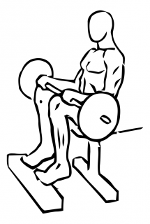 Seated calf raise with barbell small frame 2