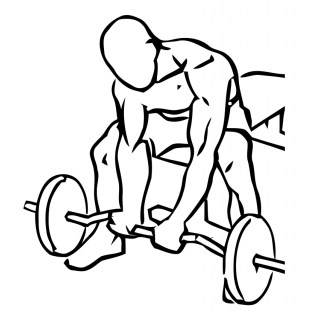 Seated close grip concentration curls with barbell small frame 1