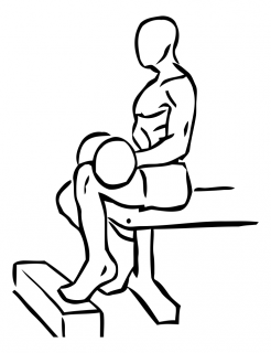 Seated one leg calf raise with dumbbell small frame 2