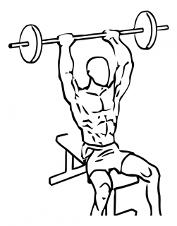 Seated overhead triceps extension with barbell small frame 1