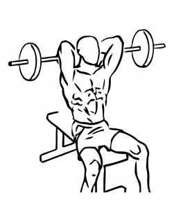 Seated overhead triceps extension with barbell small frame 2