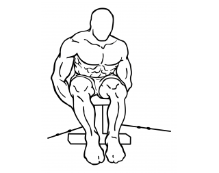 Seated rear lateral cable raise small frame 2