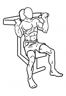 Seated shoulder press machine small frame 1