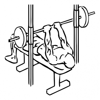 Smith machine close grip bench press small frame 1