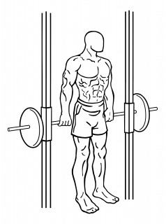 Smith machine hack squat small frame 1