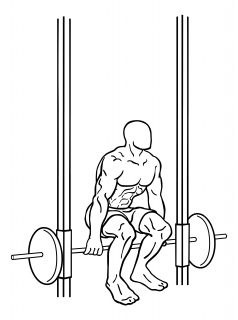 Smith machine hack squat small frame 2