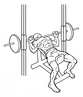 Smith machine incline bench press small frame 1