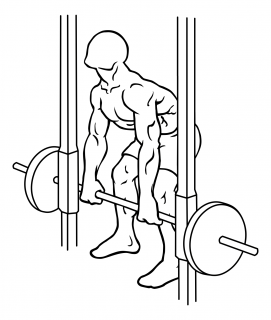 Smith machine rear deltoid row small frame 1