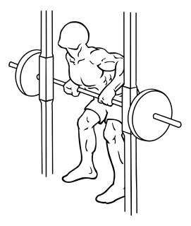 Smith machine rear deltoid row small frame 2