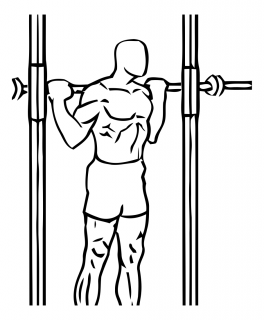 Smith machine reverse calf raises small frame 2