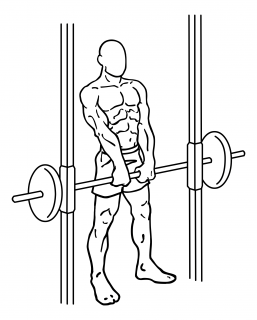 Smith machine shoulder shrugs small frame 1