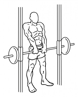 Smith machine shoulder shrugs small frame 2