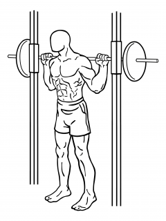 Smith machine squats small frame 1