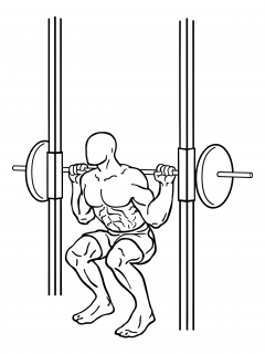 Smith machine squats small frame 2