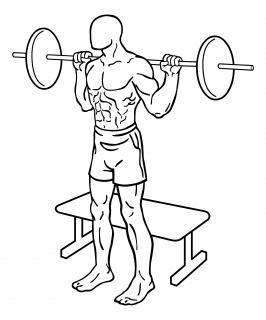 Squat to bench with barbell small frame 1