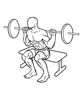 Squat to bench with barbell small frame 2