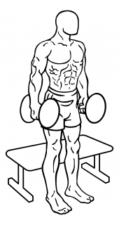 Squat to bench with dumbbells small frame 1