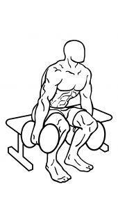 Squat to bench with dumbbells small frame 2