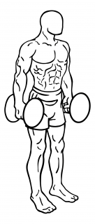 Squats using dumbbells small frame 1