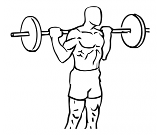 Standing barbell calf raise small frame 2
