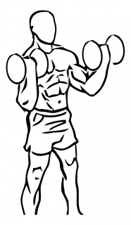 Standing inner biceps curl with dumbbell small frame 2