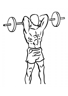 Standing overhead triceps extension with barbell small frame 2