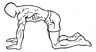 Stationary abdominal draw in small frame 2