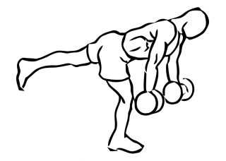 Stork stance bicep curl with dumbbells small frame 1