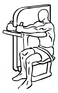 Triceps extensions using machine small frame 2