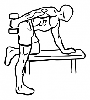 Triceps kickback with dumbbell small frame 2