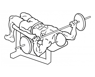 Wide grip decline bench press small frame 2