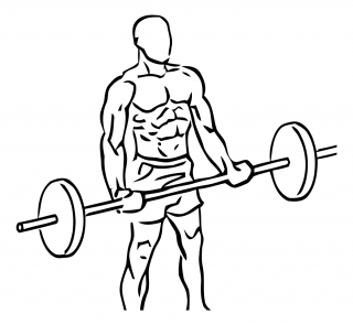 Wide grip standing biceps curl with barbell small frame 1