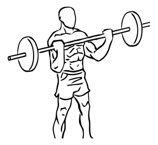 Wide grip standing biceps curl with barbell small frame 2